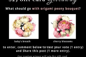 $25 Gift Card Giveaway – Help Me Decide Which Origami Bouquet to Bring to the Museum –