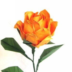 Premium Origami Rose