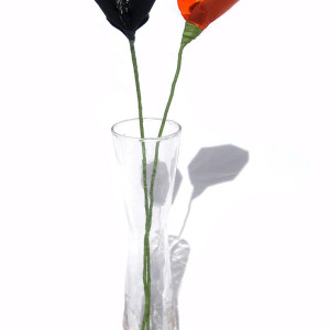 Halloween Calla Lily (Black and Orange)