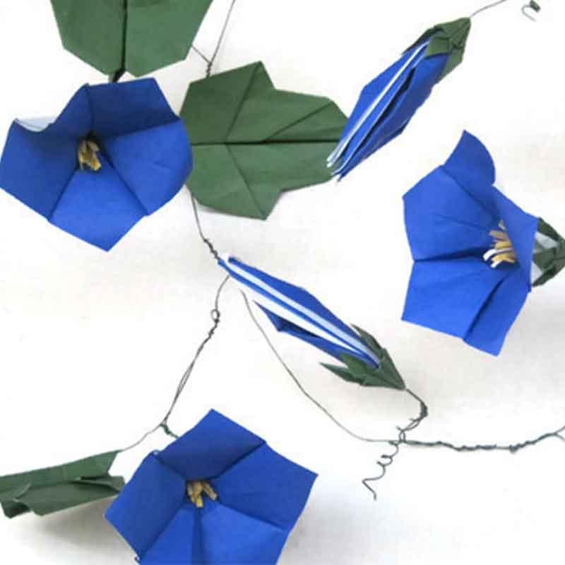 origami morning glory