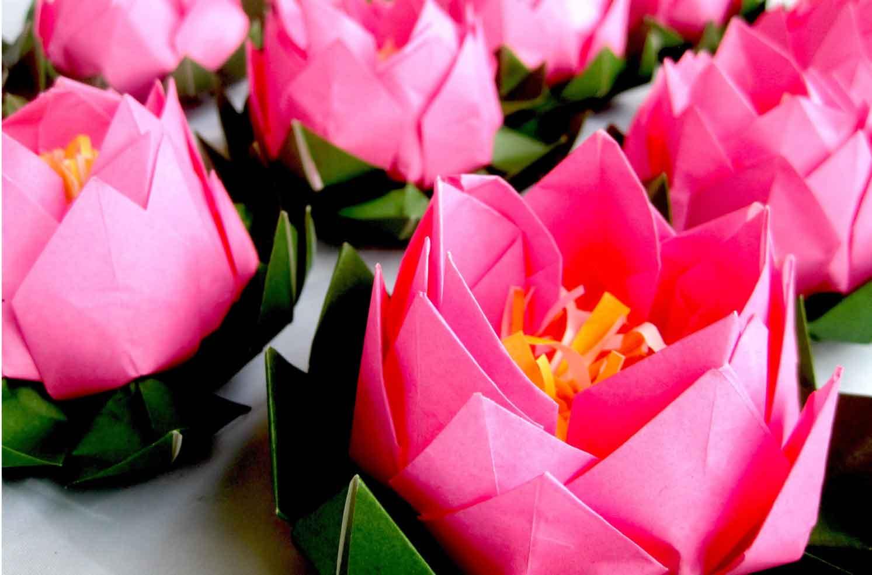 Pink Origami Lotus Graceincrease Custom Origami Art