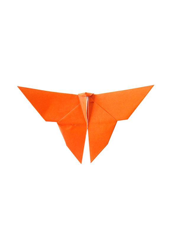 orange paper butterfly